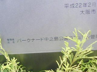 J0010171.jpg